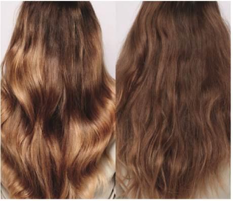 """""""אוטמים את משטח השיער עם שכבת מגן"""". שוורצקופף FIBREPLEX  צילום: יח""""צ"""